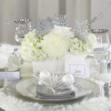 faszinierenden winter-wonderland-Tisch-Dekoration-Ideen-weiß-Silber