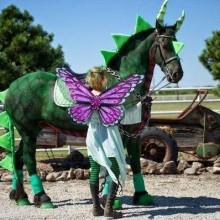 kreative Halloween-Kostüme für Pferd und Reiter feendrache