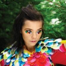 bjoerk-stil-parrot-make-up-fuer-halloween-23
