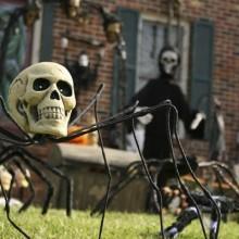 halloween-haus-dekoration-outdoor-deko-ideen-halloween-requisiten-spider-skull
