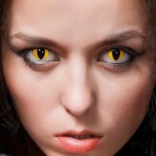 cat eye gelbe halloween Kontaktlinsen