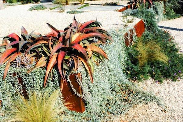 japanischer steingarten pflanzen – reimplica, Hause und Garten