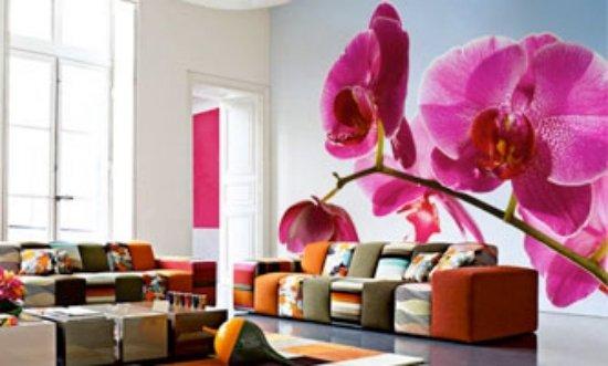 wohnen-zimmer-dekoration-ideen-wand-dekoration-rosa-orchidee ...